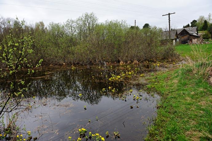 Пейзажи природы средней полосы России весной
