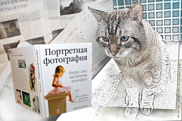 Кот с книгой Марка Клейгорна Портретная фотография