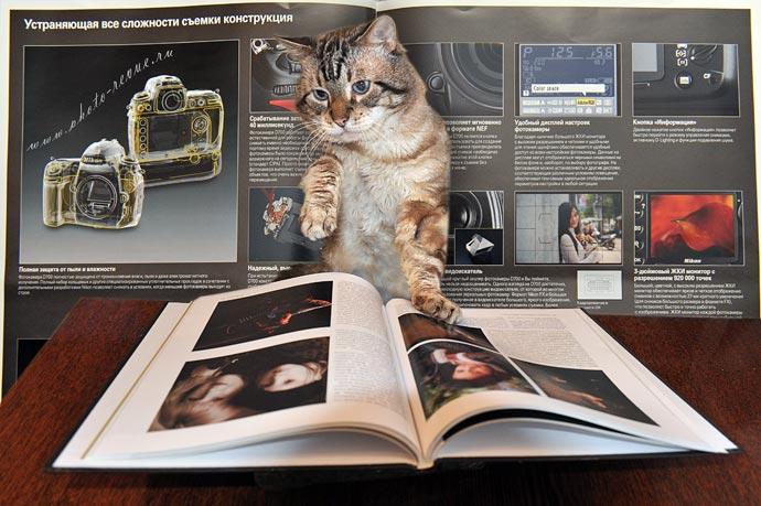 Кот с книгой Билла Хартера Секреты портретной фотографии от профессионалов