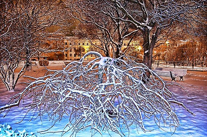 Зимние пейзажи Санкт-Петербурга